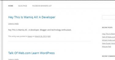 WordPress Posts Loop