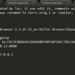 Tor Configuration File