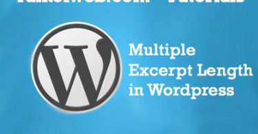 Multiple WordPress Excerpt Length