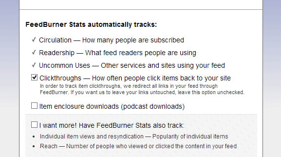 Feed Burner Stats options